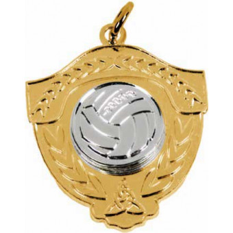 Gaelic Ball Shield Silver...