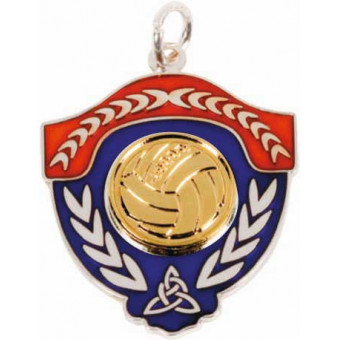 Gaelic Ball Shield Gold...