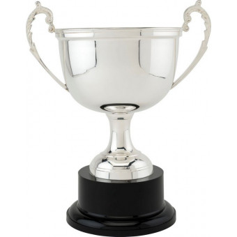 Cambridge Silver Plated Cup...