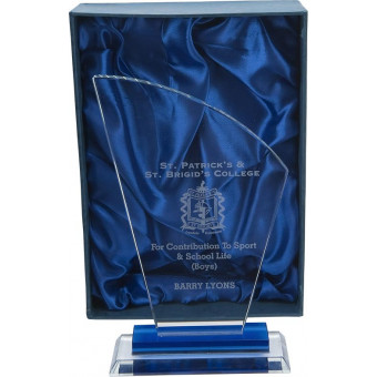 Curved Top Glass Award 21cm