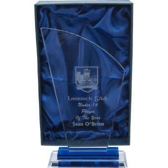 Curved Top Glass Award 24cm
