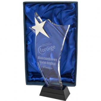 Crystal Star Award 26cm