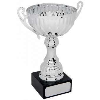 Classic Silver Cup with...