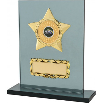 Gray Glass Award with Star...