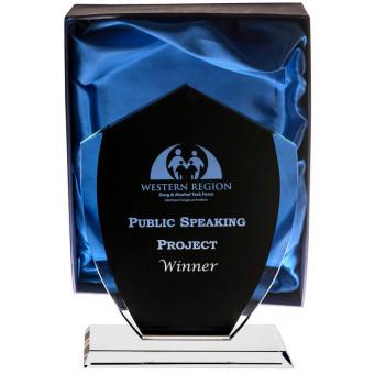 Black Coated Glass Award 22cm