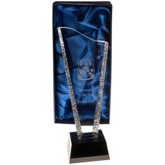 Wave Glass Award 26.5cm